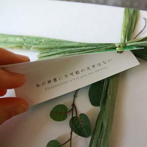 iro (いろ)バスタオル - ナポレオンの緑